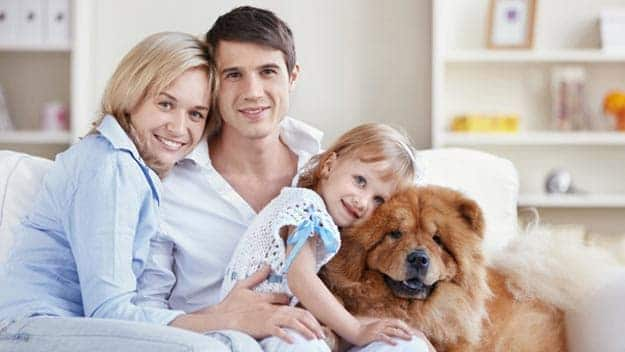 Wills & Trusts dog-young-family Direct Wills Sipson